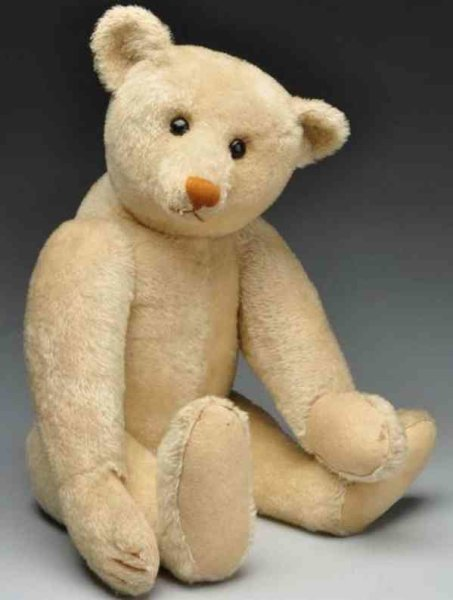 Steiff Baers White american bear, rust colored nose, four claws and shoe