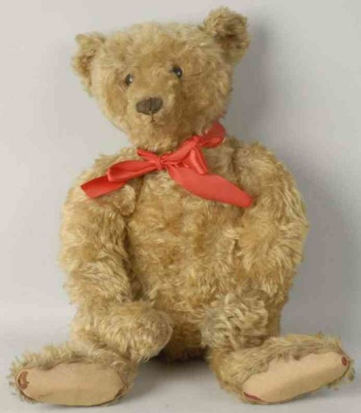 Steiff Baers Teddy bear gold mohair with shoe button eyes and original pa